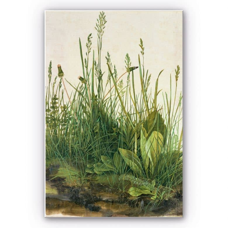 Wandbild Dürer - Das große Rasenstück