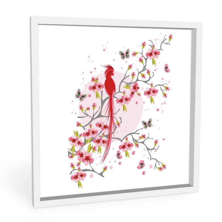Wandbild Paradiesvogel - quadratisch