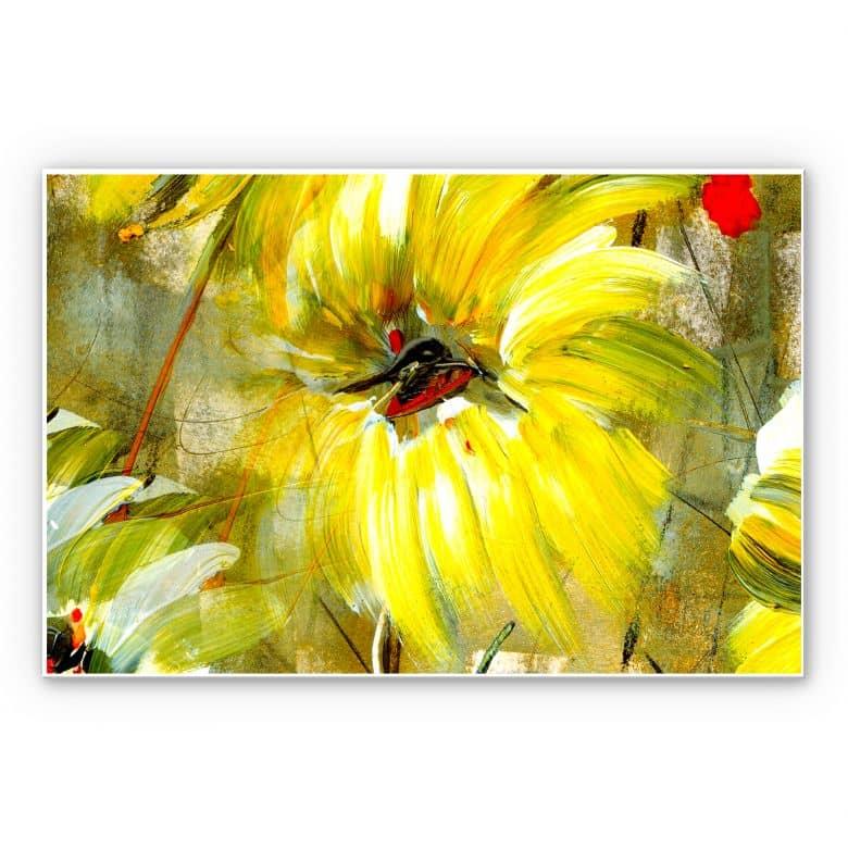 Wandbild Niksic - Der Raum voller Sonne und Freude