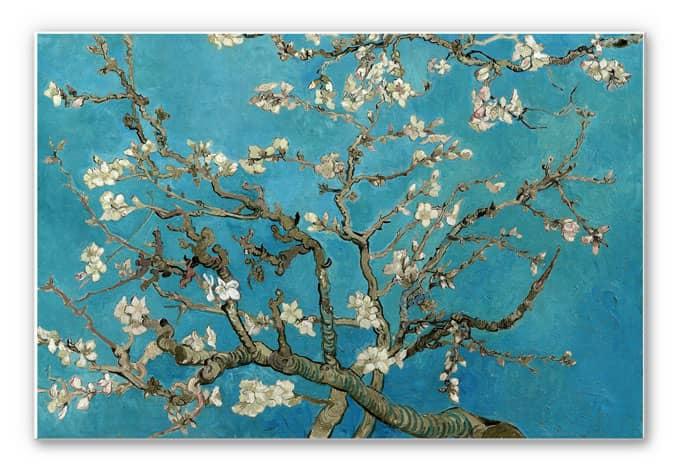 Forex Print van Gogh - Almond Blossom