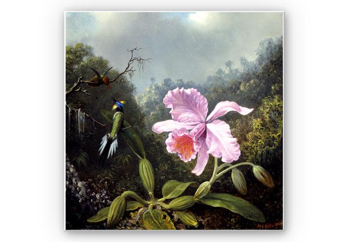 Wandbild Heade - Stillleben mit Orchidee und Kolibris