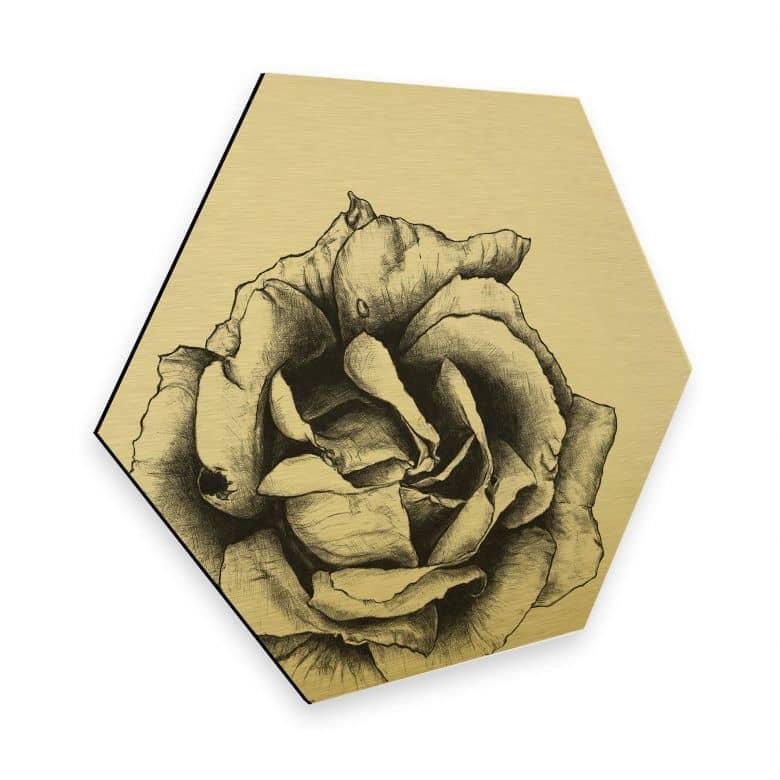 Hexagon - Alu-Dibond Goldeffekt Kools - Thornless