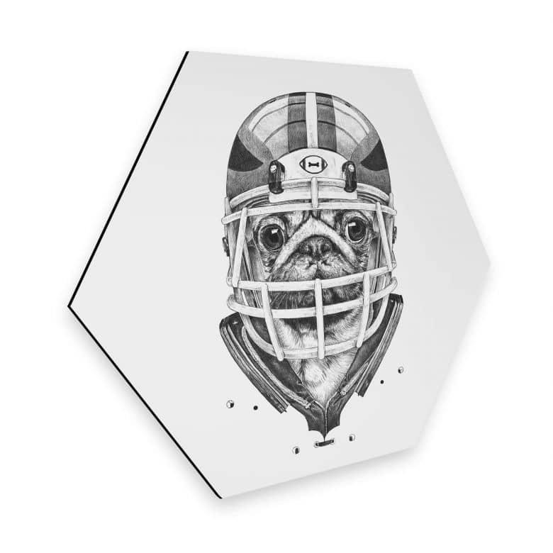 Hexagon - Alu-Dibond Kools - American Pug Football