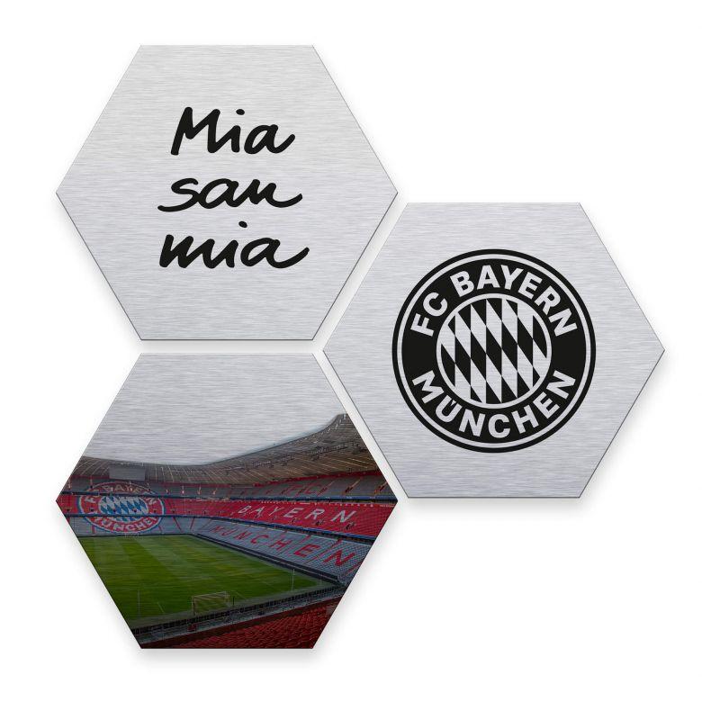 Hexagon alu-dibond zilver effect - FC Bayern