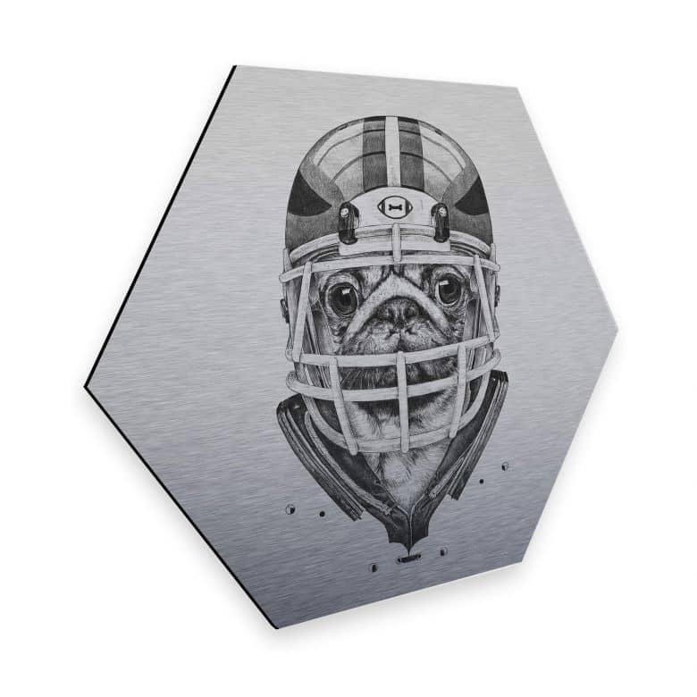 Hexagon - Alu-Dibond-Silbereffekt Kools - American Pug Football