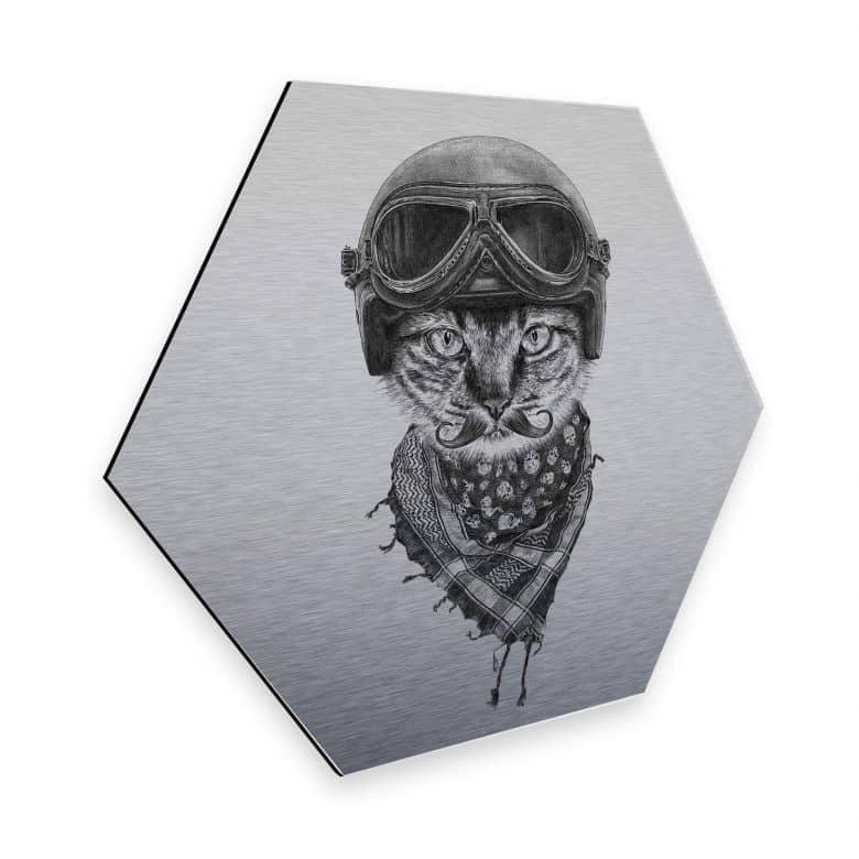 Hexagon - Alu-Dibond Silbereffekt Kools - Biker Cat