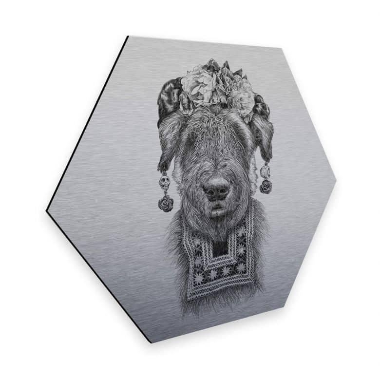 Hexagon - Alu-Dibond Silver effect Kools - Suusi Kahlo