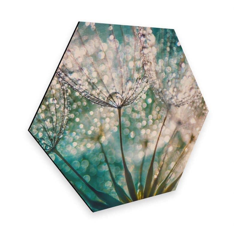 Hexagon - Alu-Dibond Delgado - Glittery Dandelions