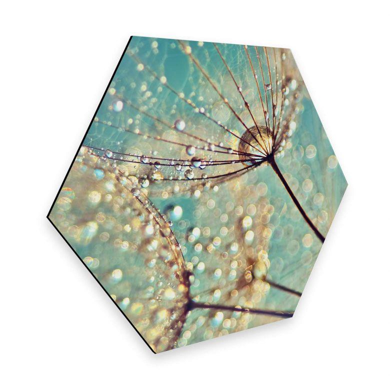 Hexagon - Alu-Dibond Delgado – Magische Pusteblume