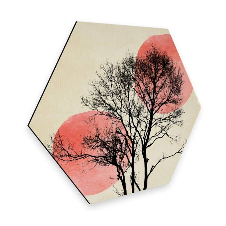 Hexagon - Alu-Dibond - Kubistika - Sonne und Mond hinter dem Baum
