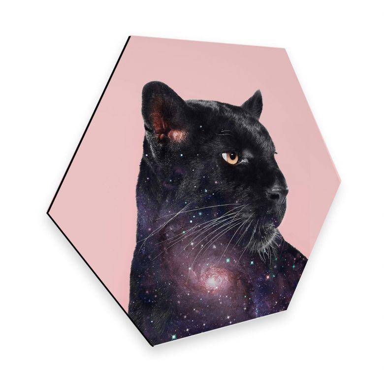 Hexagon - Alu-Dibond Loose – Galaxy Panther