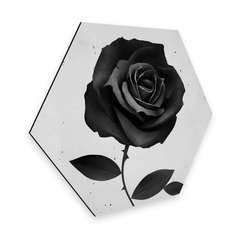 Hexagon - Alu-Dibond Ireland - Fabric Rose