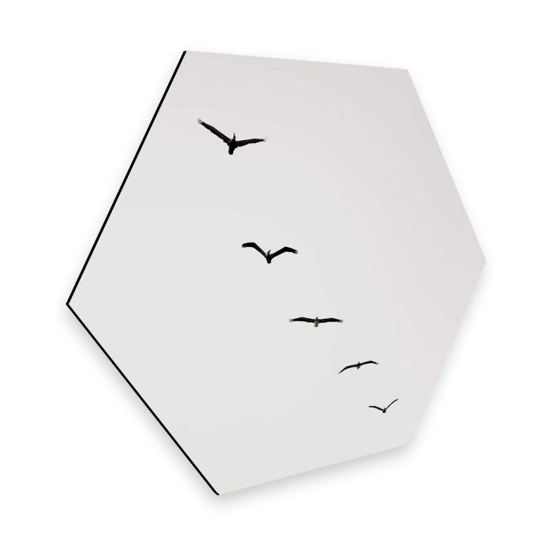 Hexagon - Alu-Dibond Kubistika - Hoch am Himmel