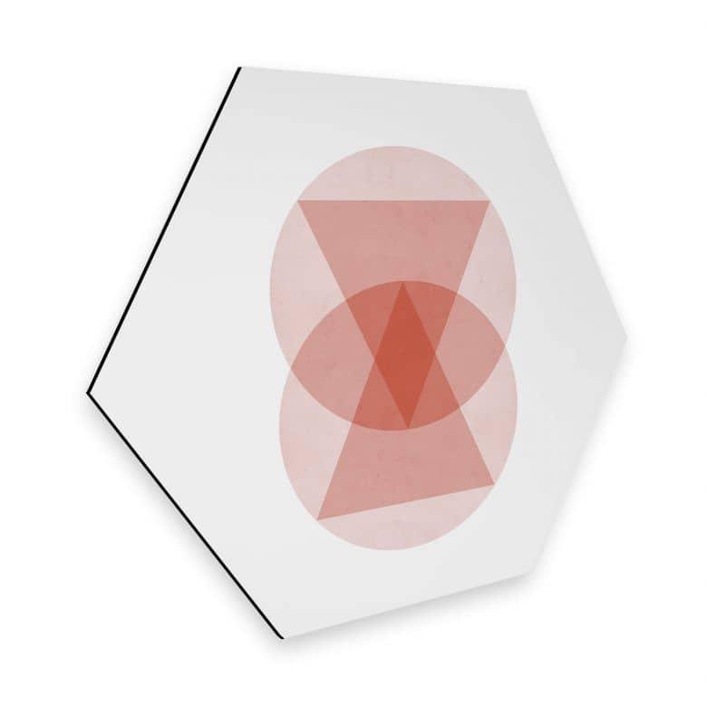 Hexagon - Alu-Dibond Nouveauprints - Circles and triangles pink