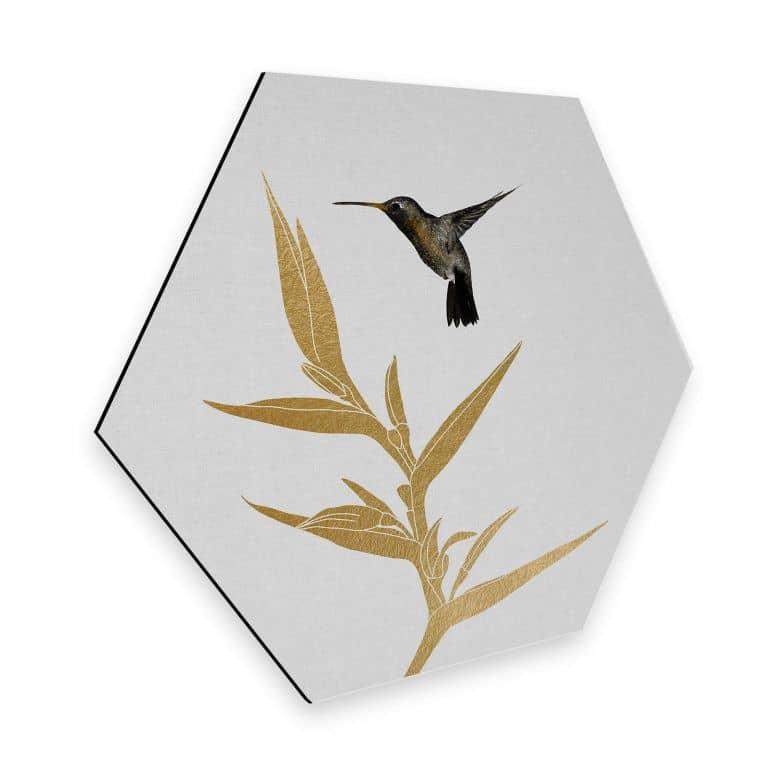 Hexagon Dibond Orara Studio - Hummingbird & Plant
