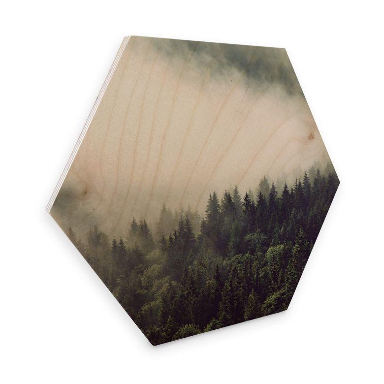 Hexagon Hout Nevel in het Bos 02