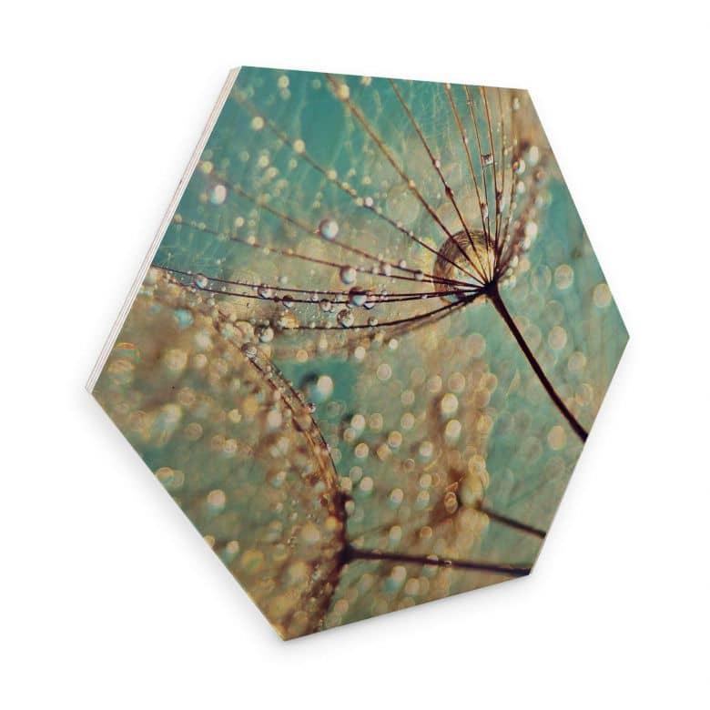 Hexagone - Placage bois de bouleau - Delgado - Pissenlit magique