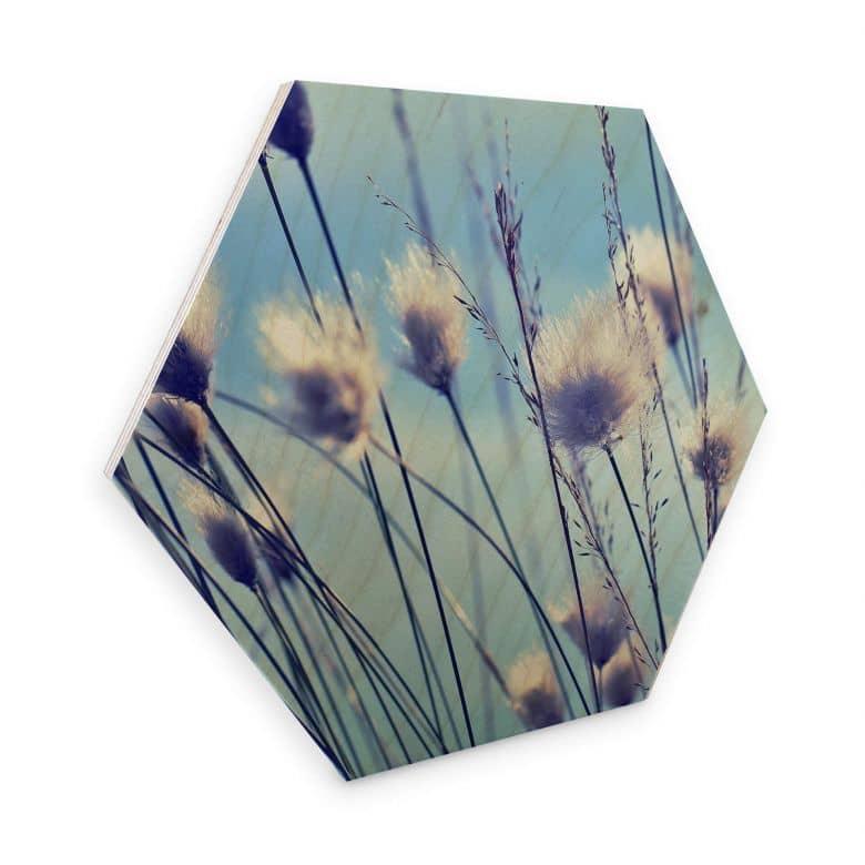 Hexagon Wood - Delgado - Windy Grass