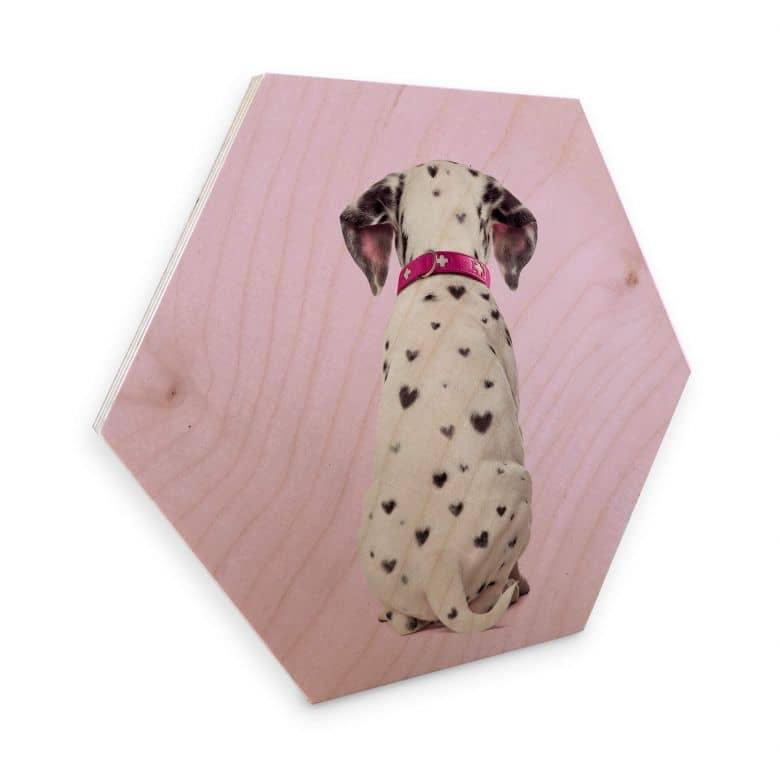 Hexagon - Holz Birke-Furnier Fuentes - Dalmatiner Herzchen