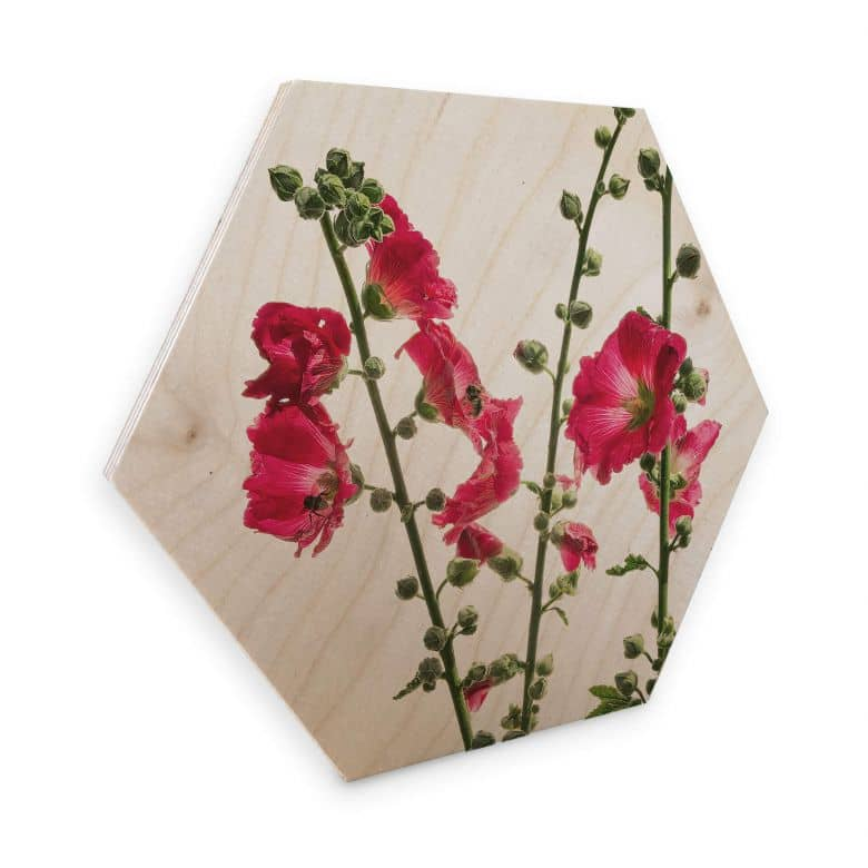 Hexagon Hout - Kadam - Rose