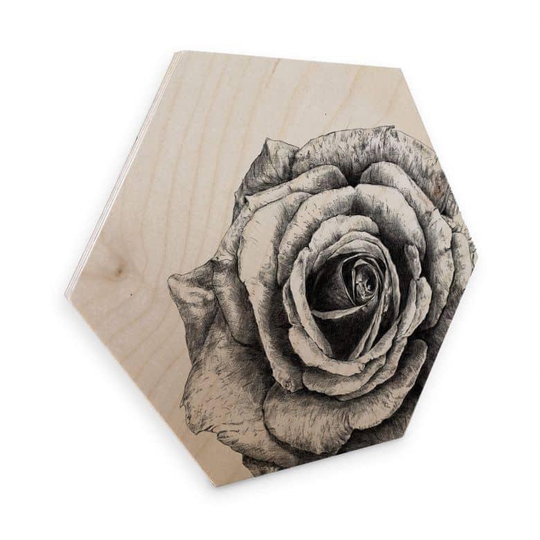 Hexagon - Wood Birch veneer Kools - Rose