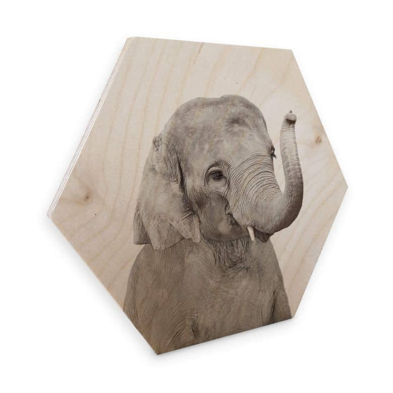 Hexagon Hout Sisi & Seb - Baby Elephant