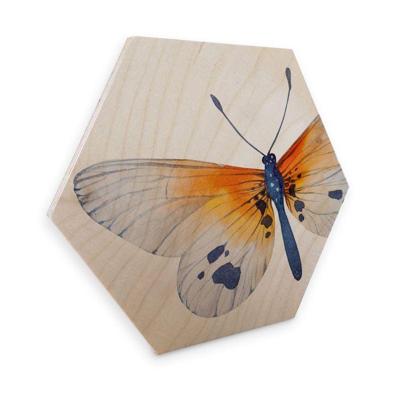 Hexagon Hout Berkenfineer - Kvilis Butterflies