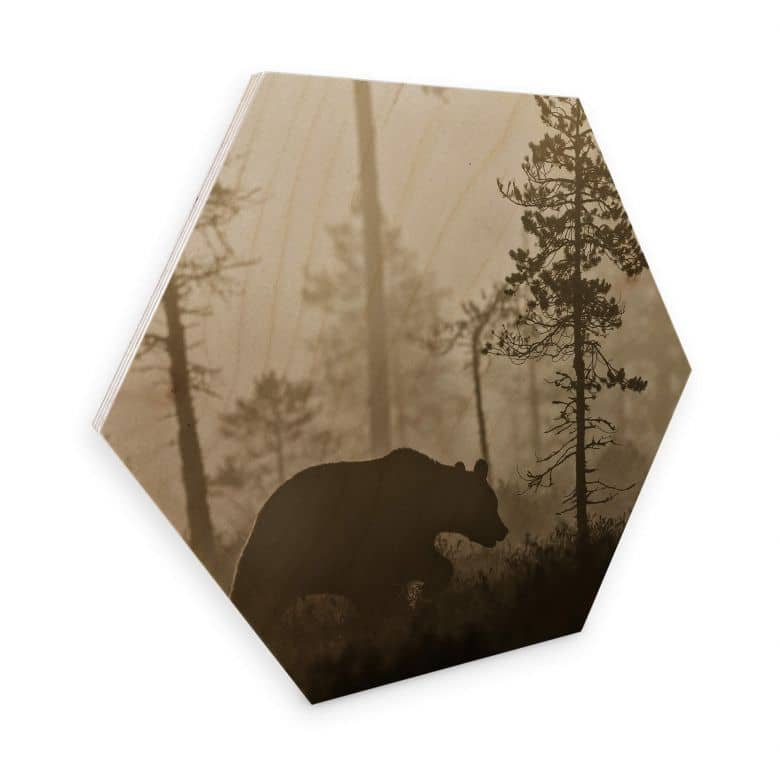Hexagon Hout - Ove Linde - Foggy Morning