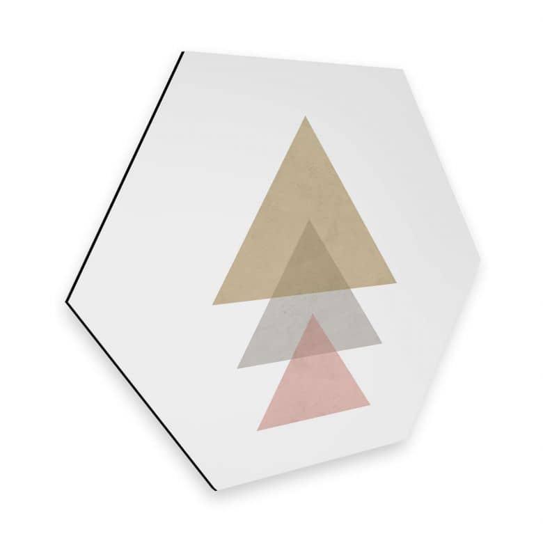 Hexagon - Alu-Dibond Nouveauprints - Triangles pink