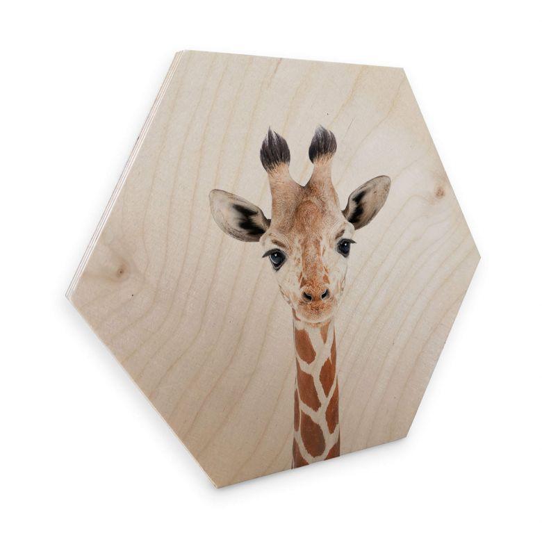 Hexagon Hout Sisi & Seb - Baby Giraffe