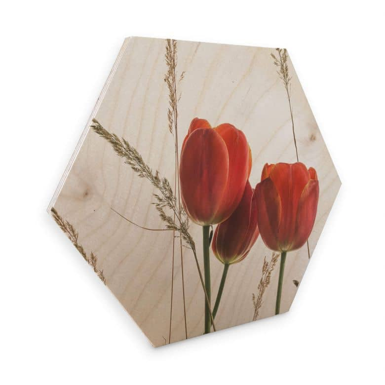 Hexagon - Birch veneer Kadam - Flora Tulips