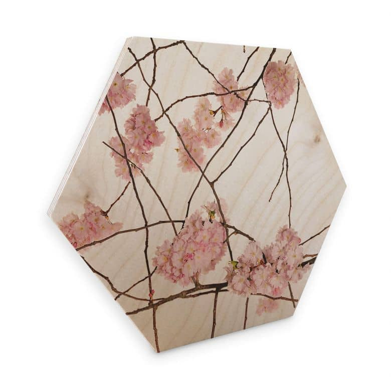 Hexagon birch wood Kadam - Cherry Blossom