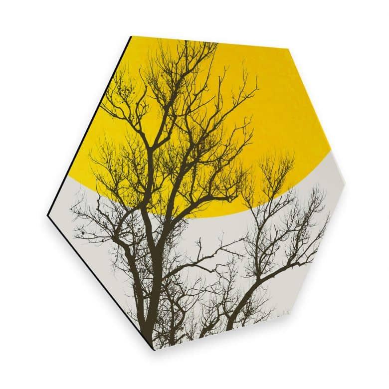 Hexagon - Alu-Dibond - Kubistika - Autumn Memories