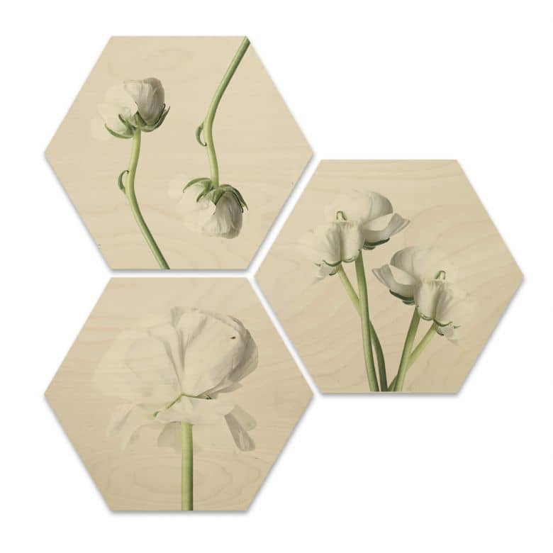 Hexagon Wood - Flowers