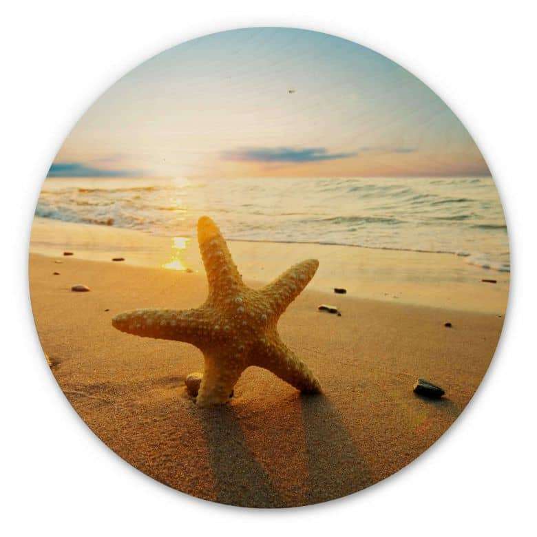 Holzbild Seestern im Sand - Rund