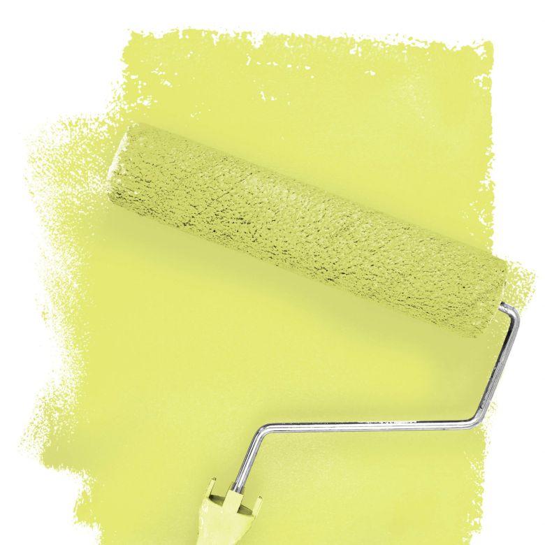 Wall paint FANTASY Living Room Colour Saguaro 1D matt/ silk sheen