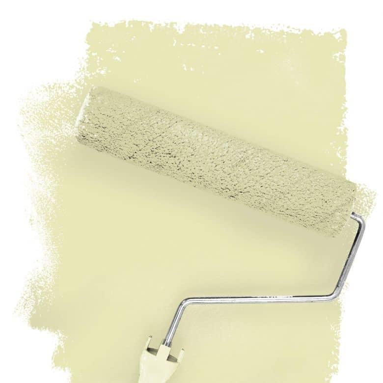 Wall paint FANTASY Living Room Colour Carnegia 3B matt/ silk sheen