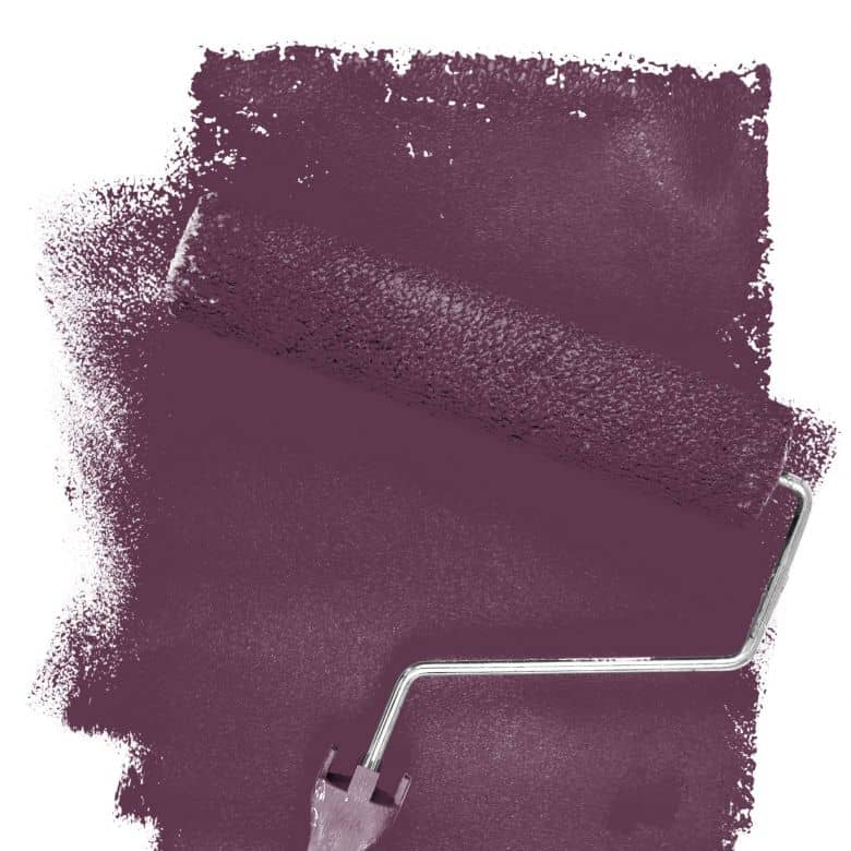 Wall paint FANTASY Living Room Colour Carnaby 4F matt/ silk sheen