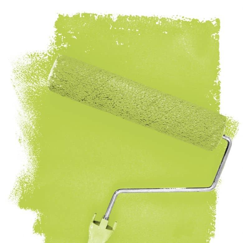 Wall paint FANTASY Living Room Colour Killarney 2E matt/ silk sheen