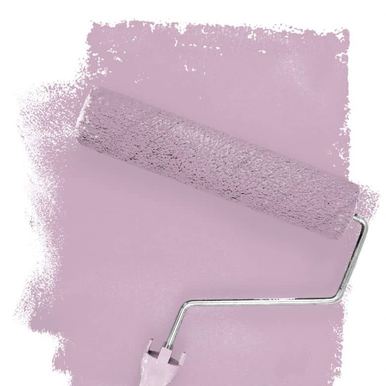 Wall paint FANTASY Living Room Colour English Rose 5C matt/ silk sheen