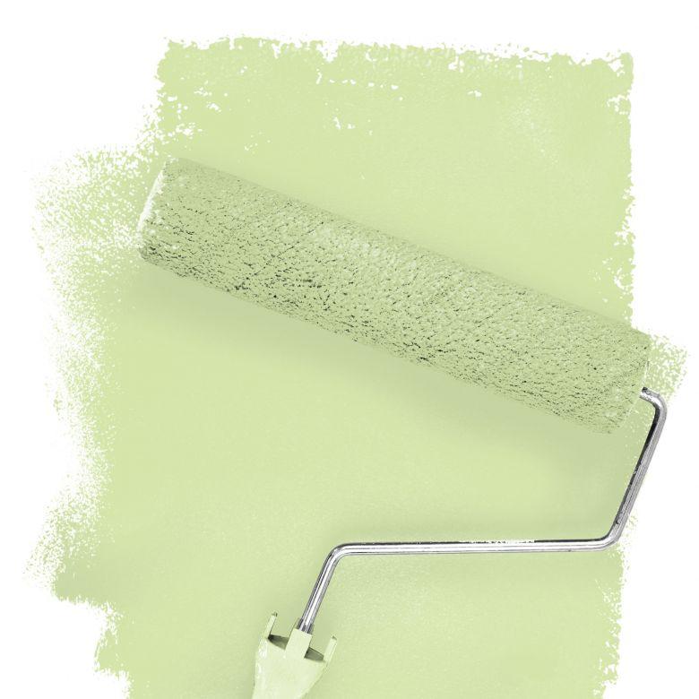 Wall paint FANTASY Living Room Colour Killarney 3B matt/ silk sheen