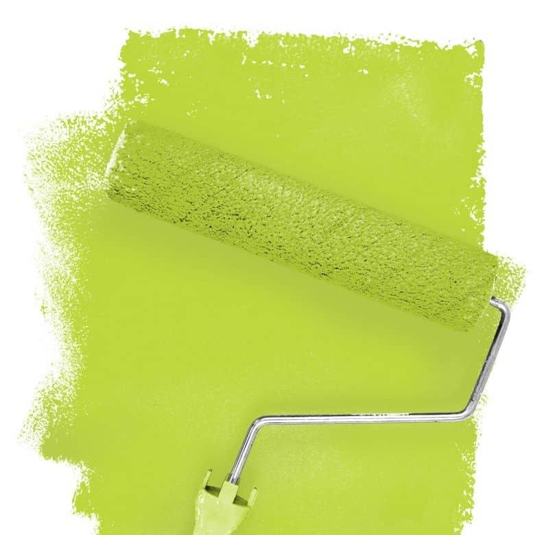Wall paint FANTASY Living Room Colour Donegal 1D matt/ silk sheen