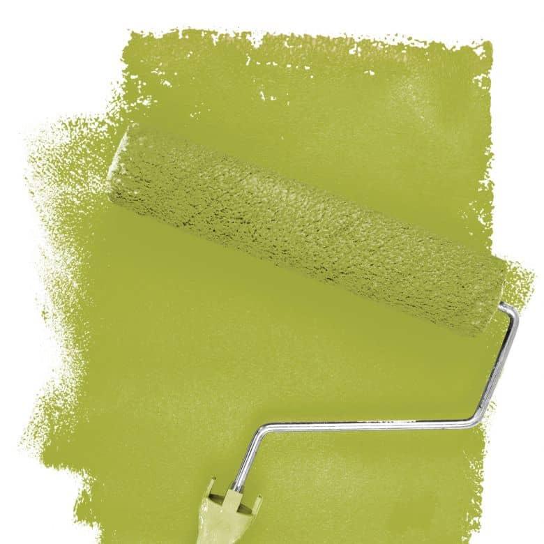 Wandfarbe FANTASY Wohnraumcolor Saguaro 2F matt/seidenglänzend