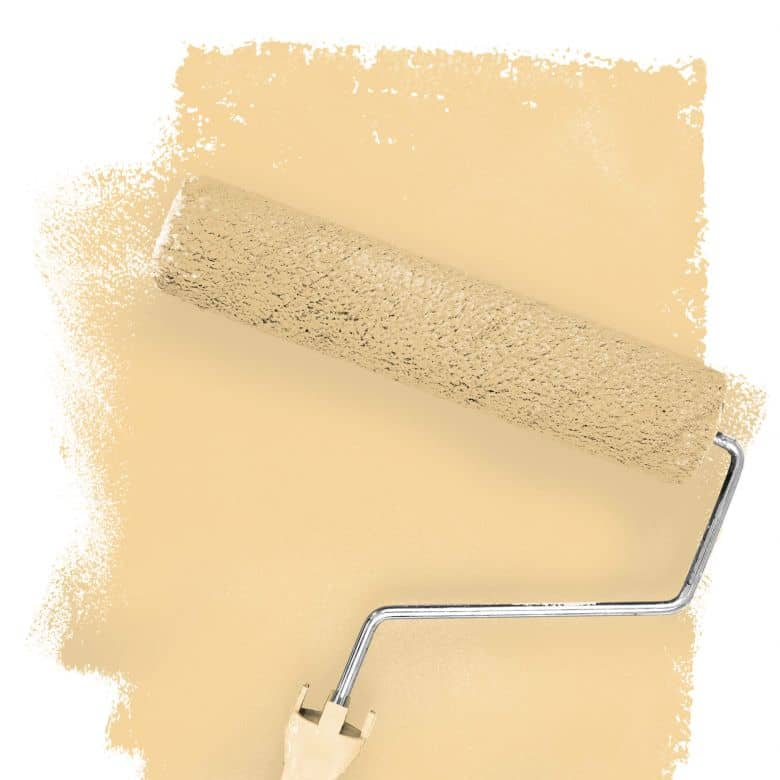 Wall paint FANTASY Living Room Colour Gobi 4B matt/ silk sheen