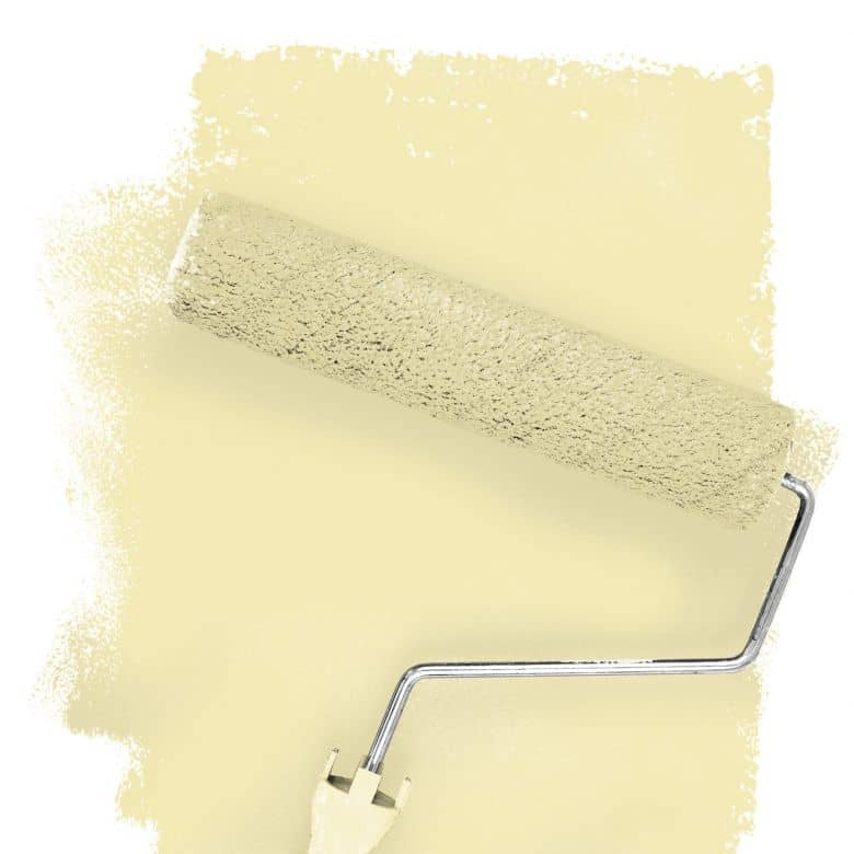 Wall paint FANTASY Living Room Colour Mojave 1B matt/ silk sheen