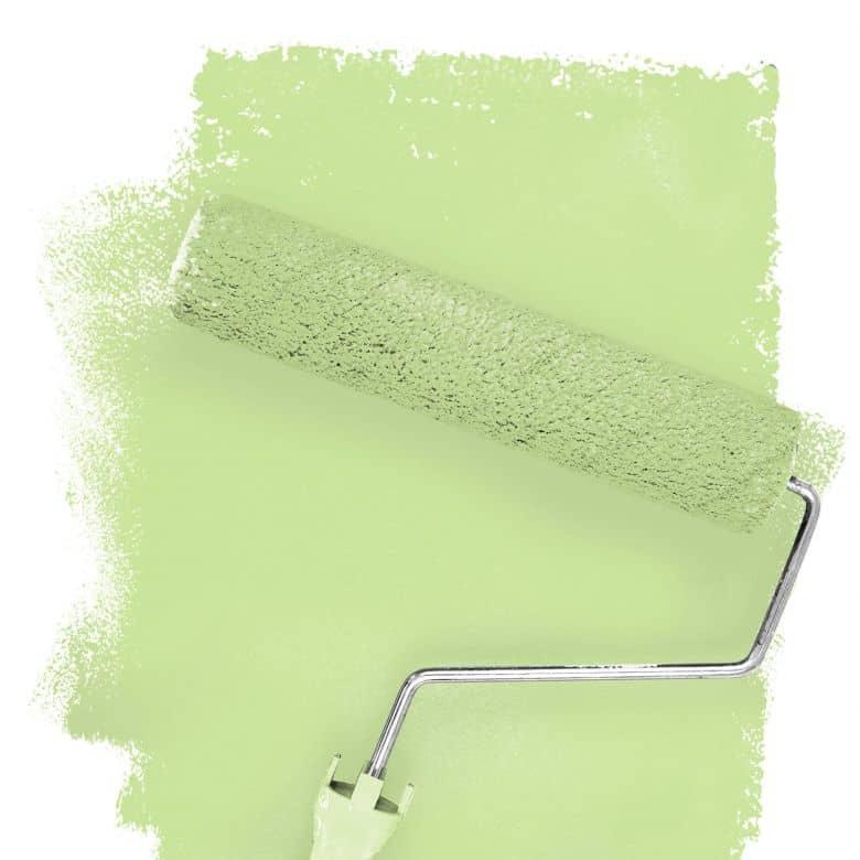 Wall paint FANTASY Living Room Colour Donegal 3B matt/ silk sheen