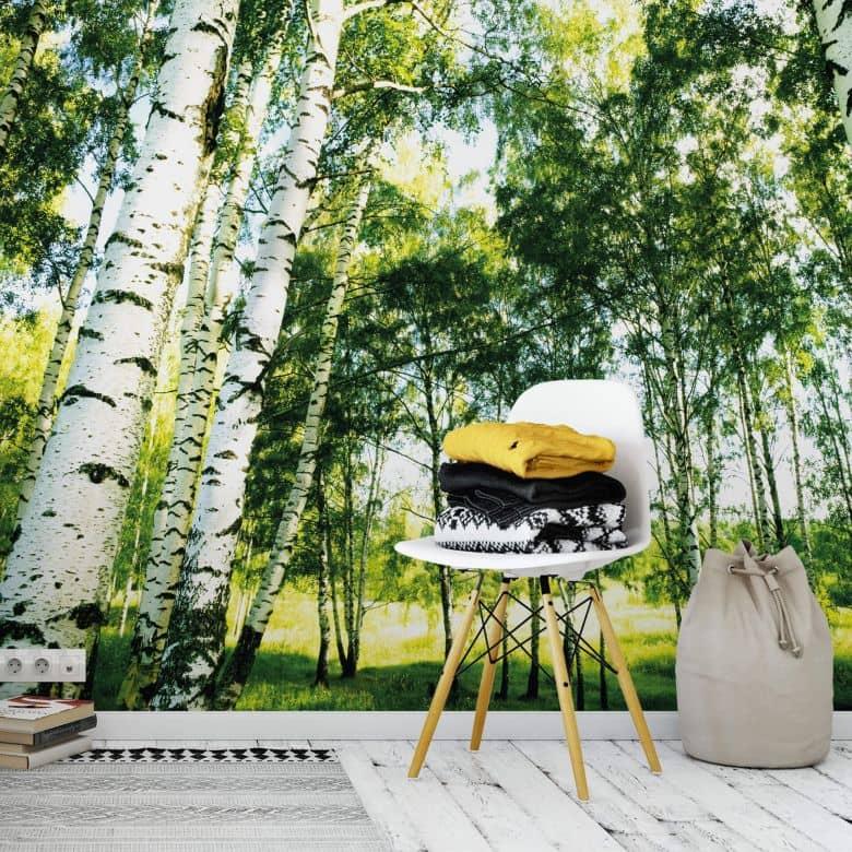 Fototapete Papiertapete Sunshine Forest - 366x254 cm
