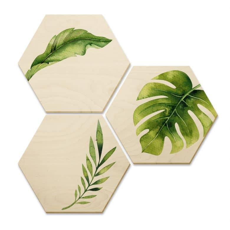 Hexagon Birch veneer Kvilis - Jungle