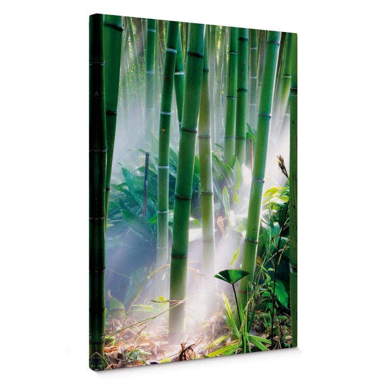 Bamboo Forest Canvas print