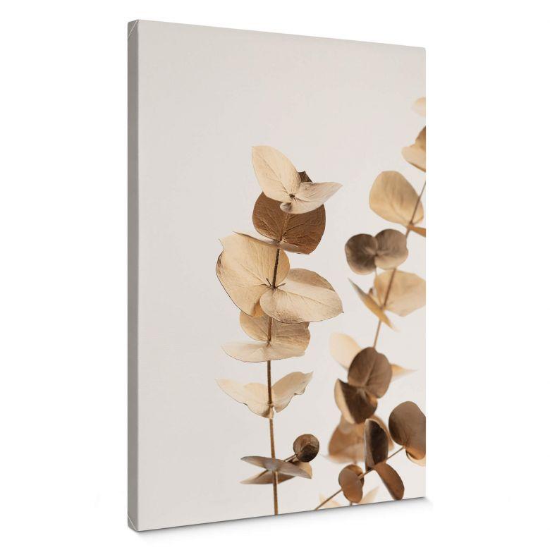 Leinwandbild 1X Studio - Goldener Eukalyptus